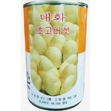 단풍 초고버섯캔(2.8Kg)
