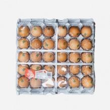계란 대란 1판